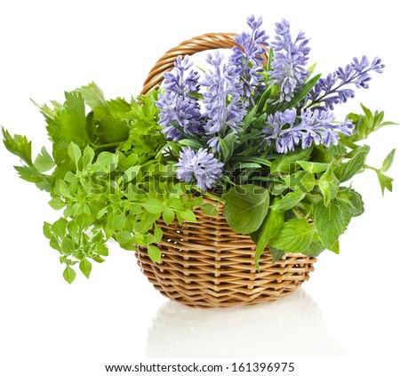 Fresh aromatic herbs in basket isolated on white background - stock photo