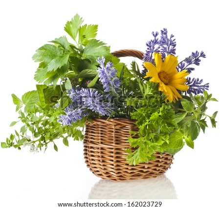 Fresh aromatic herbs in basket isolated on white background