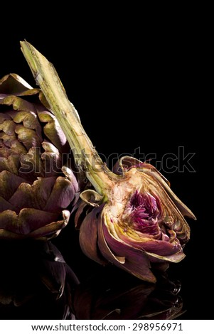 Fresh artichoke isolated on black background. Culinary healthy vegetable eating.  - stock photo
