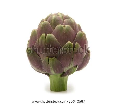 fresh artichoke on white background - stock photo