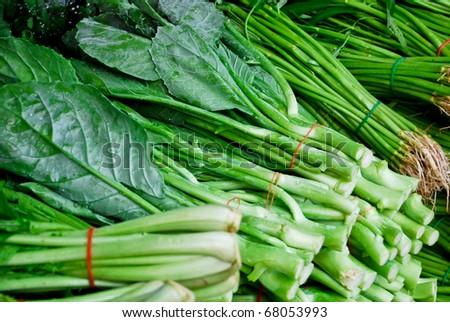 fresh asian kale lettuce in fresh market , Asia , Thailand - stock photo