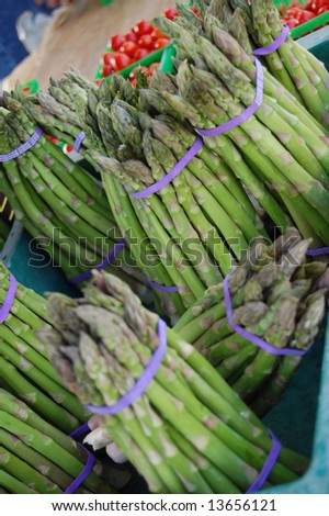 fresh asparagus - stock photo