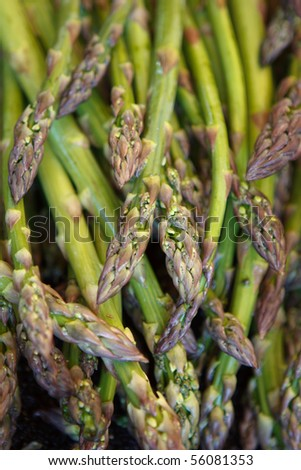 Fresh asparagus at market - stock photo