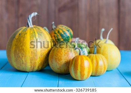 Fresh assorted pumpkin and squash from autumn garden on an old wooden table with dark background, with copyspace. - stock photo