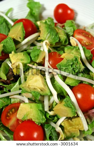 Fresh avocado and bean sprout salad ready to serve. - stock photo