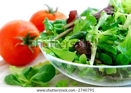 Fresh baby greens salad and tomatoes close up - stock photo