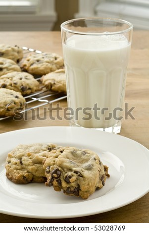 Fresh baked chocolate chip cookies and glass of milk - stock photo