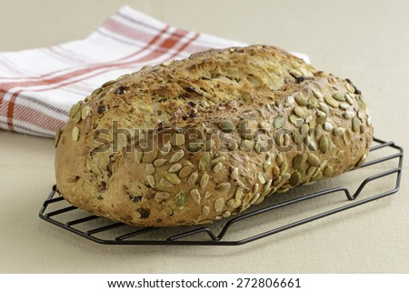 Fresh baked cranberry and pumpkin seed bread. - stock photo
