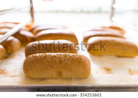 Fresh baked sesame buns ready for sale  - stock photo