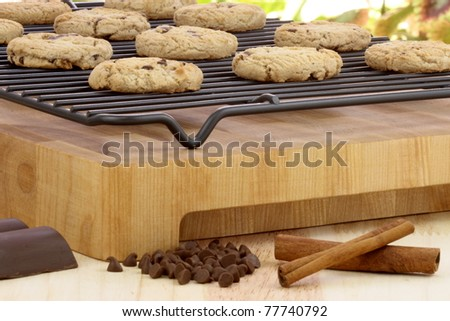 Fresh baked Stack of warm chocolate chips cookies on cooling rack shallow DOF