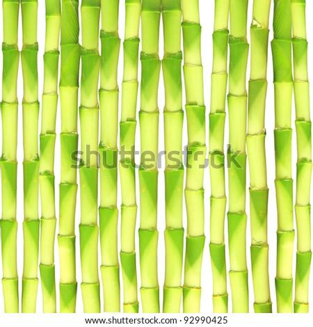 Fresh Bamboo seamless background - stock photo