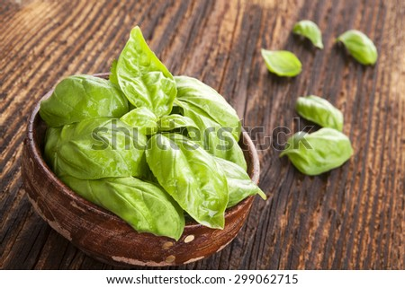 Fresh basil herbs in wooden bowl on old wooden brown background. Culinary herbs, rustic style.  - stock photo