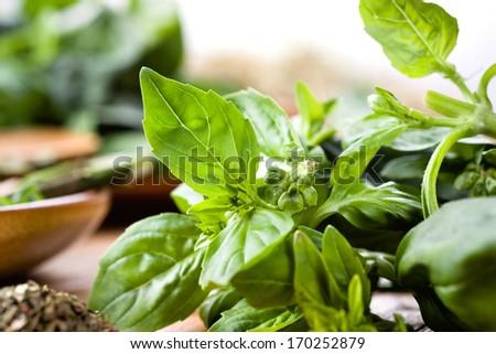 Fresh basil on dark wooden background - stock photo