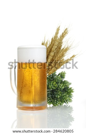 fresh beer with Green hops and ears of barley isolated on a white background - stock photo