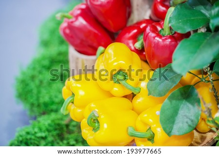 Fresh Bell Pepper healthy paprika,sweet pepper vegetable green yellow red Bell Pepper food fresh healthy natural paprika - stock photo