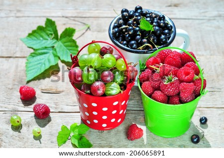 Fresh berries - gooseberry, black currant and raspberry  - stock photo