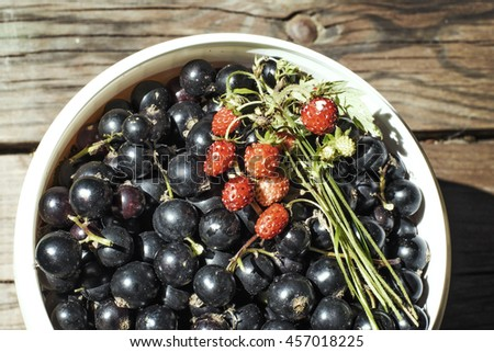 fresh berries of black currant in a bowl - stock photo