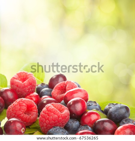 Fresh berries on abstract green background