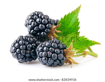 fresh berry blackberry with green leaf isolated on white background - stock photo