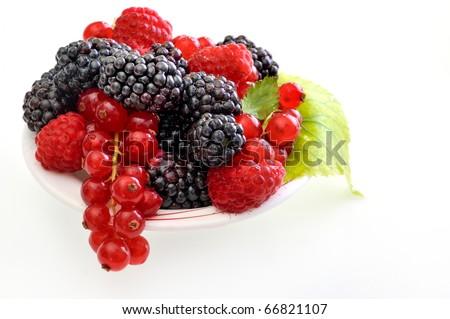 fresh berry fruits - stock photo