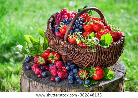 Fresh berry fruits in basket - stock photo