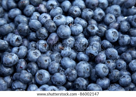 Fresh Bilberries. Close-up background. Shallow DOF - stock photo