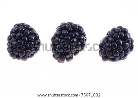 Fresh blackberries isolated on white