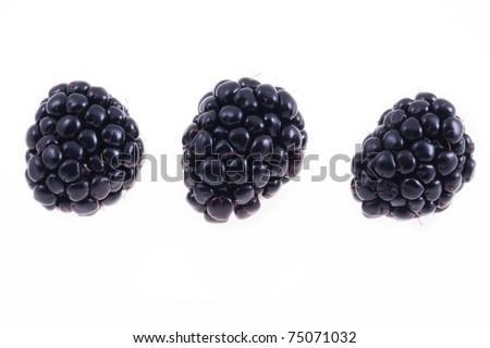 Fresh blackberries isolated on white - stock photo