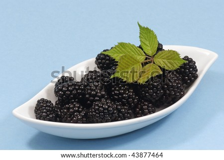 Fresh blackberries with leaves in a white bowl