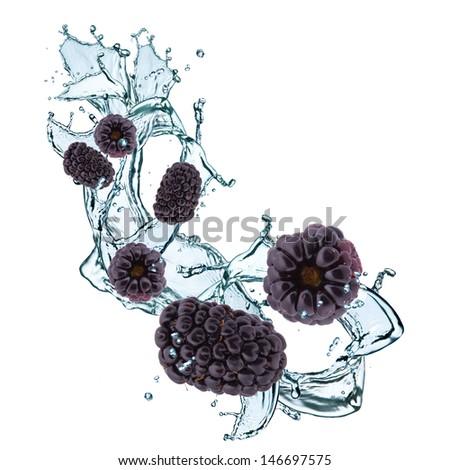fresh blackberry in water splash - stock photo