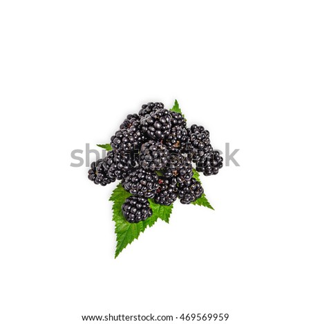 Fresh blackberry with green blackberry leaves isolated on white background