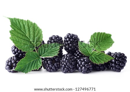 Fresh blackberry with green leaf on white background - stock photo