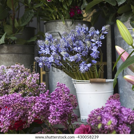 Fresh blue campanula and violet lilac near flower shop - stock photo