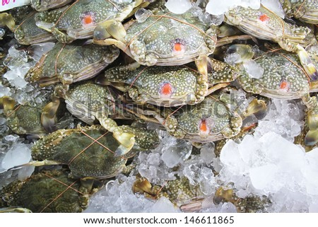 Fresh blue crab at a seafood market. - stock photo