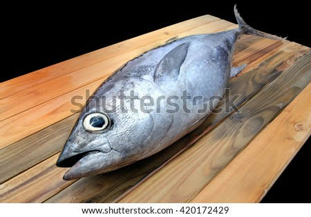 fresh blue fin tuna from market on wooden photo in sunlight - stock photo