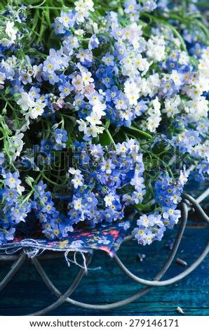Fresh blue forget-me-not flower on the wooden background - stock photo