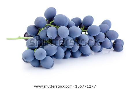 Fresh blue grapes isolated on white background - stock photo