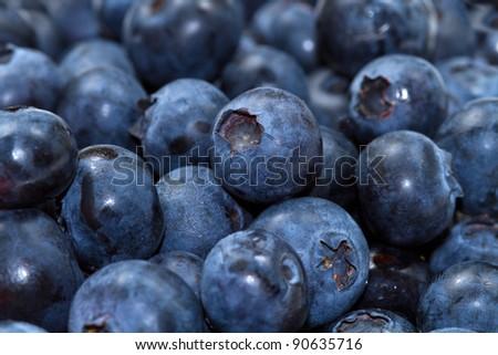 fresh blueberries background - stock photo