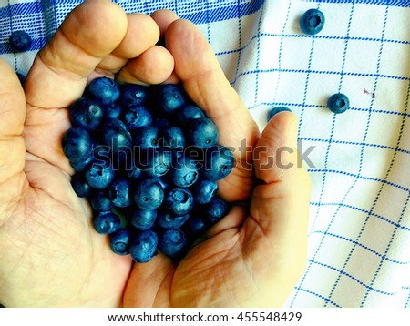 Fresh blueberries in a manâ??s hands  - stock photo