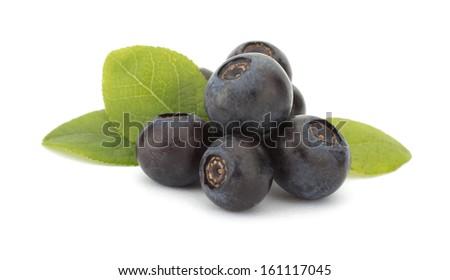 Fresh blueberries isolated on white background - stock photo