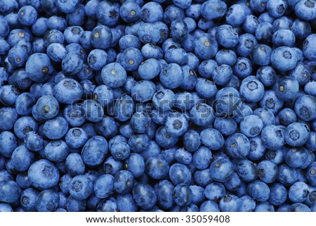Fresh Blueberry Background - stock photo