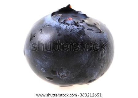 fresh blueberry isolated on the white background - stock photo
