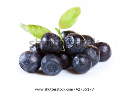 Fresh blueberry with leaves isolated on white background - stock photo