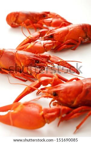Fresh boiled crawfish on white isolated background - stock photo