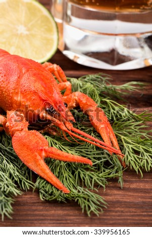 Fresh boiled crawfish with a slice of lime, dill and glass of beer on a table close-up - stock photo