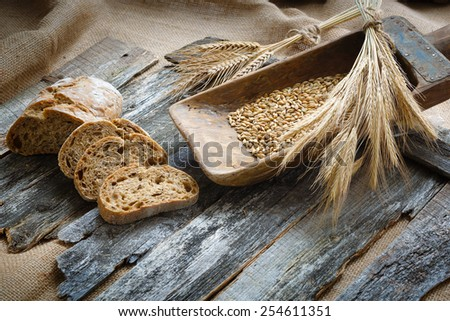 Fresh bread and wheat on the wooden boards - stock photo