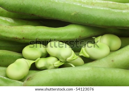 fresh Broad beans background