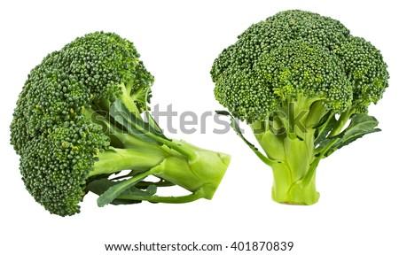 Fresh broccoli isolated on white background - stock photo