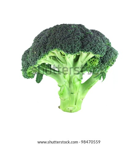 Fresh broccoli isolated standing on white background - stock photo