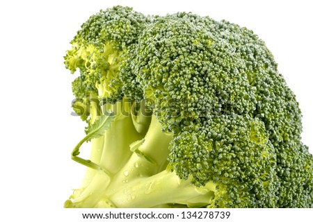 Fresh broccoli on a white background close-up - stock photo